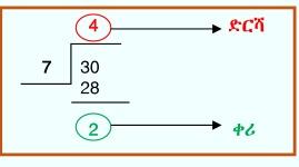 Division Figure